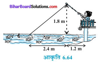 Bihar Board Class 10 Maths Solutions Chapter 6 त्रिभुज Ex 6.6 Q10