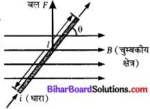 Bihar Board Class 10 Science Solutions Chapter 13 विद्युत धारा का चुम्बकीय प्रभाव