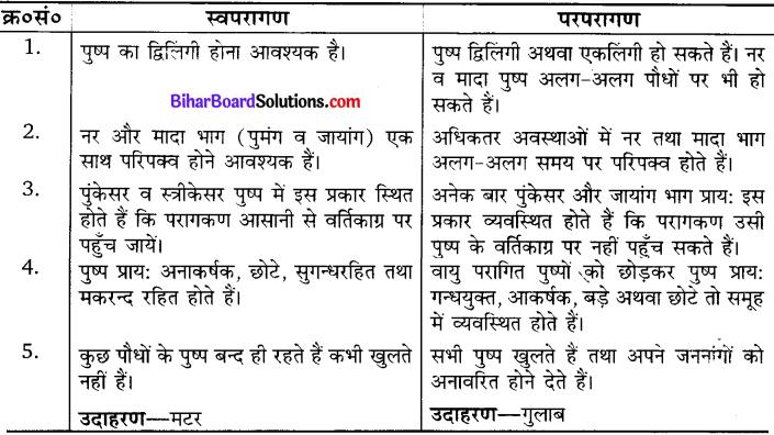 Bihar Board Class 10 Science Solutions Chapter 8 जीव जनन कैसे करते है