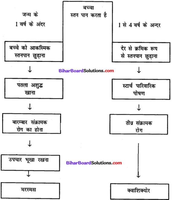 Bihar Board Class 11 Home Science Solutions Chapter 12 उचित पोषण एवं उत्तम स्वास्थ्य के लिए खाद्य पदार्थों का चयन