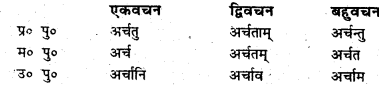 Bihar Board Class 6 Sanskrit व्याकरण धातु-रूपाणि 17