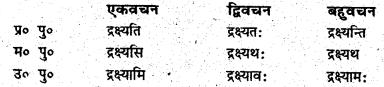Bihar Board Class 6 Sanskrit व्याकरण धातु-रूपाणि 3