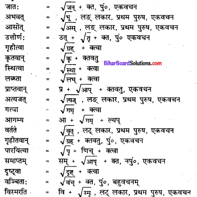 Bihar Board Class 7 Sanskrit Solutions Chapter 11 डॉ. भीमरावः अम्बेदकर 3