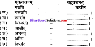Bihar Board Class 7 Sanskrit Solutions Chapter 11 डॉ. भीमरावः अम्बेदकर