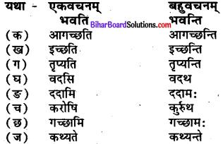 Bihar Board Class 7 Sanskrit Solutions Chapter 3 ऋतुपरिचयः 1