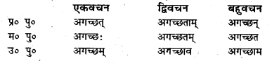 Bihar Board Class 7 Sanskrit व्याकरण धातु-रूपाणि 19