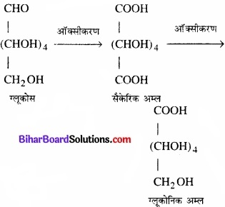BIhar Board Class 12 Chemistry Chapter 14 जैव-अणु  img-11