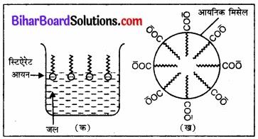 BIhar Board Class 12 Chemistry Chapter 5 पृष्ठ रसायन 12