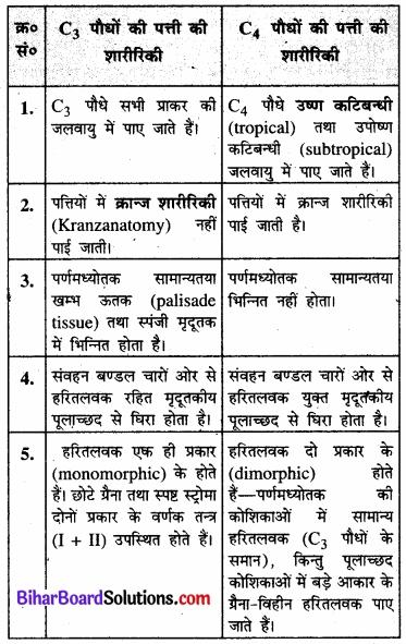 Bihar Board Class 11 Biology Chapter 13 उच्च पादपों में प्रकाश-संश्लेषण
