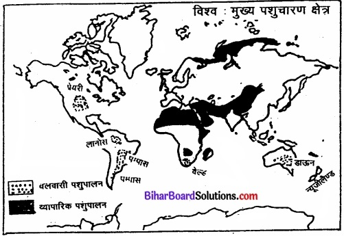 Bihar Board Class 12 Geography Solutions Chapter 5 प्राथमिक क्रियाएँ img 3