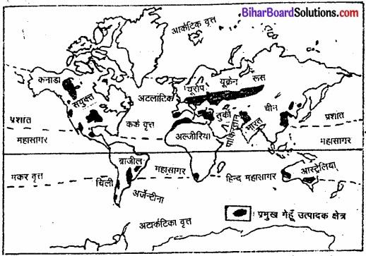 Bihar Board Class 12 Geography Solutions Chapter 5 प्राथमिक क्रियाएँ img 4