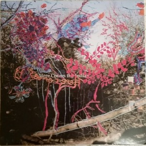 Animal Collective - Here Comes The Indian' - MY ANIMAL HOME - 0855230006168