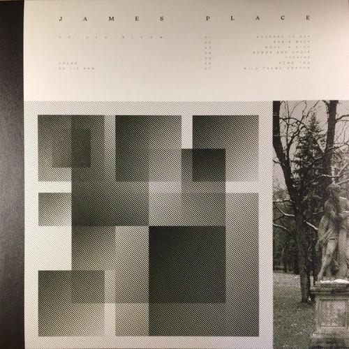 James Place - Voices Bloom - UR099 - UMOR REX