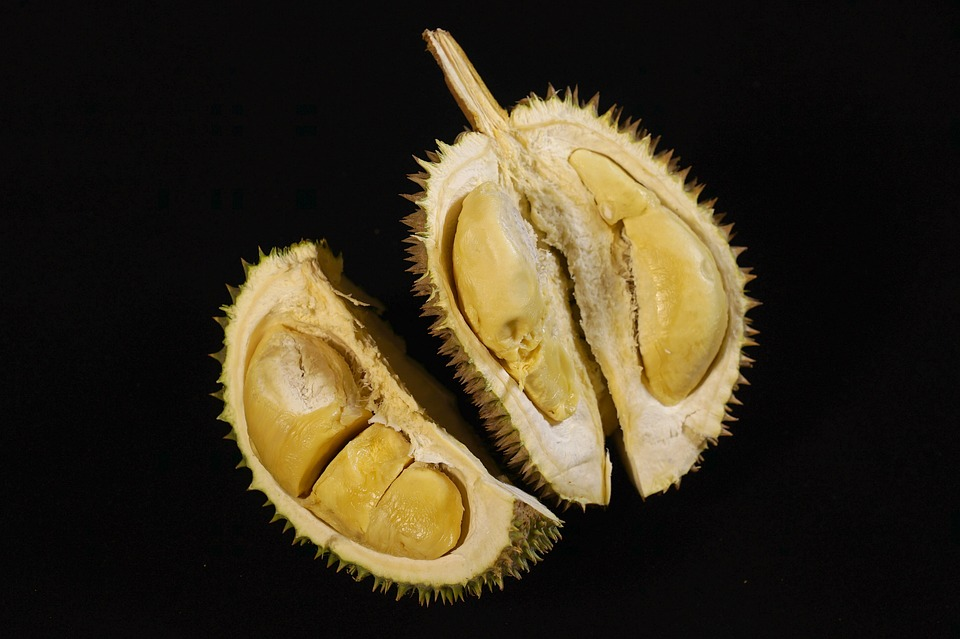 Durian   The
