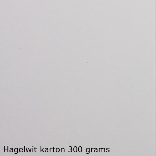 Hagelwit karton 300 grams