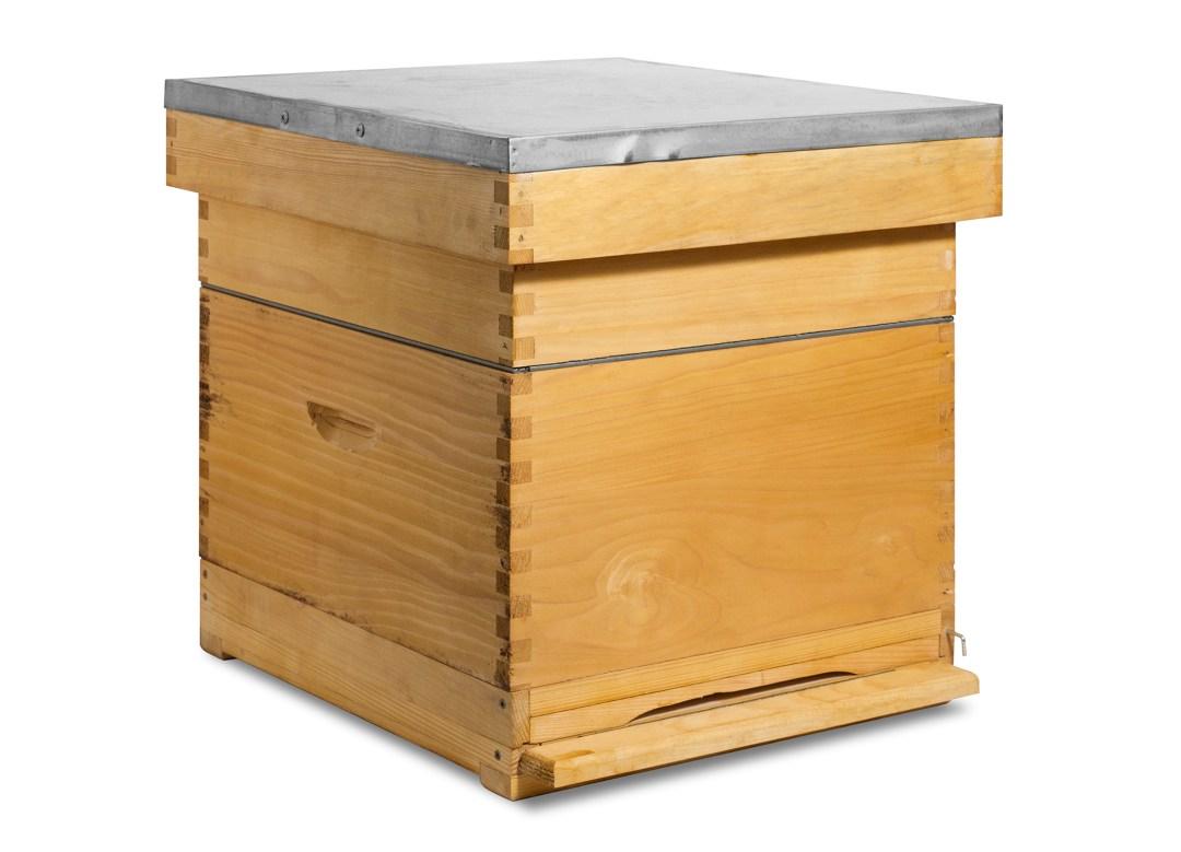 Bijenkast met bijenvolk
