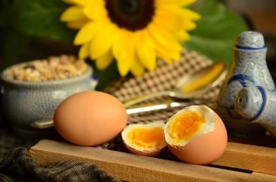 乾燥肌の人がとるべき栄養素、たんぱく質