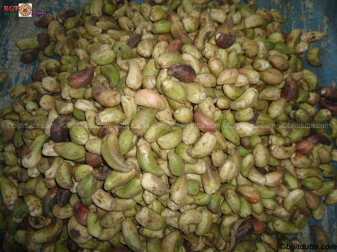 Gandhi market hapoli ziro bijit 39 s organic travel for Arunachal pradesh cuisine