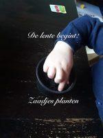 Zaadjes planten met je kinderen!