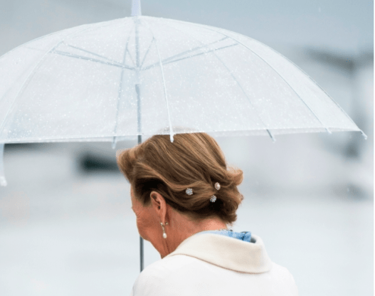 2017 05 09 80 ans Harald V et Sonja de Norvège 34 à l'Opéra