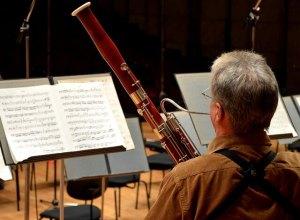 blaasinstrument - fagot