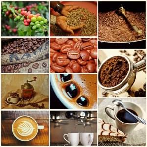Longproblemen in de koffieproductie (2)