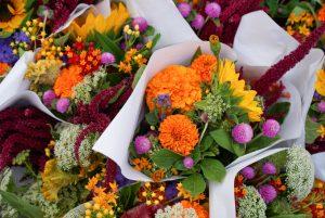 Bestanddeel plantenvoeding allergeen