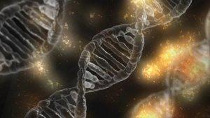 Epigenetica; simpel uitgelegd