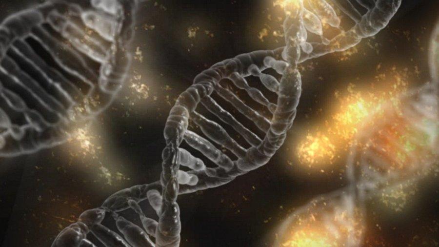 Genetica en epigenetica