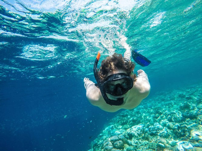 snorkelen bali menjangan island - TOP 10 BEST THINGS YOU TO DO IN BALI INDONESIA