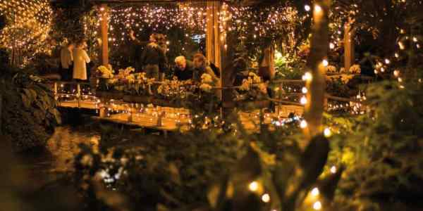 Orchideeën Hoeve Winterdroom kerstmarkt Luttelgeest