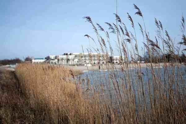 Beachclub Strandtent Makkum Strandhuys Makkum Friesland