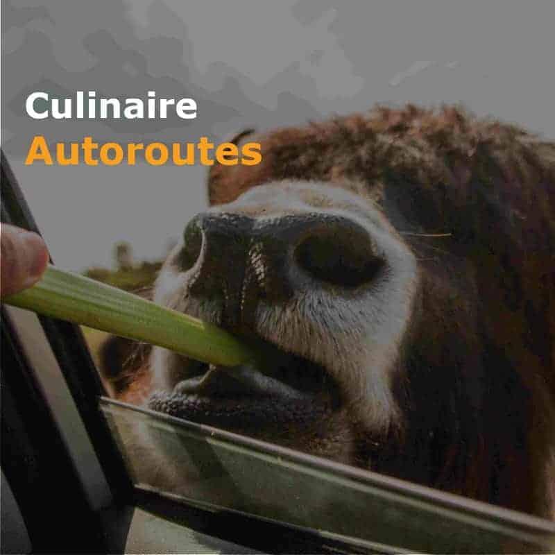 Culinaire Autorit - Culinaire Autoroutes