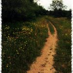 Austin-Texas-Bike-Trail