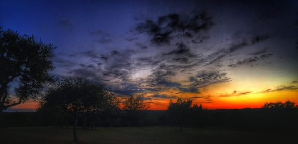 Texas Austin Sunset