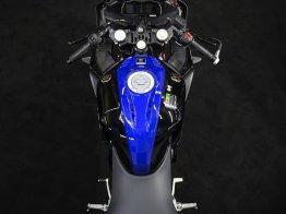 2019-Yamaha-YZF-R125-Monster-Energy-Yamaha-MotoGP-specialni-edice- (17)