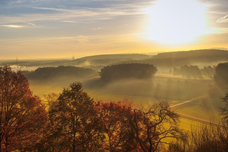 日の出 離れた 風景 Morgenrot 自然 木 道路 光 ビュー 風光明媚です