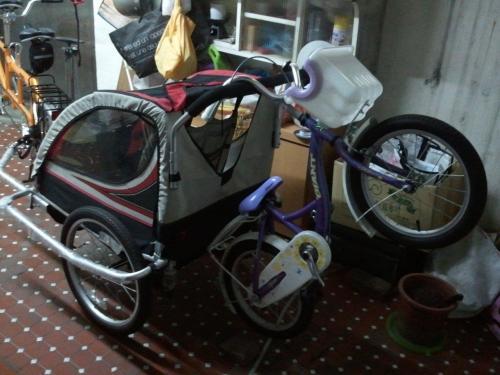 在小澄還沒完全可以自行上路之前,全家出門,就是臘腸狗號+南瓜車+附掛一台童車,到定點才放下童車給小澄騎。