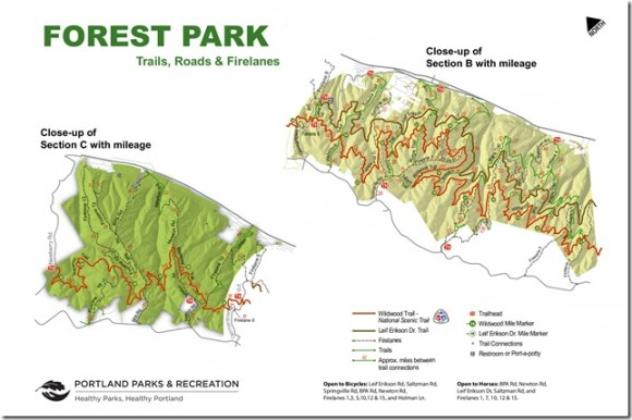 Forest Park Trails Printable Map P2