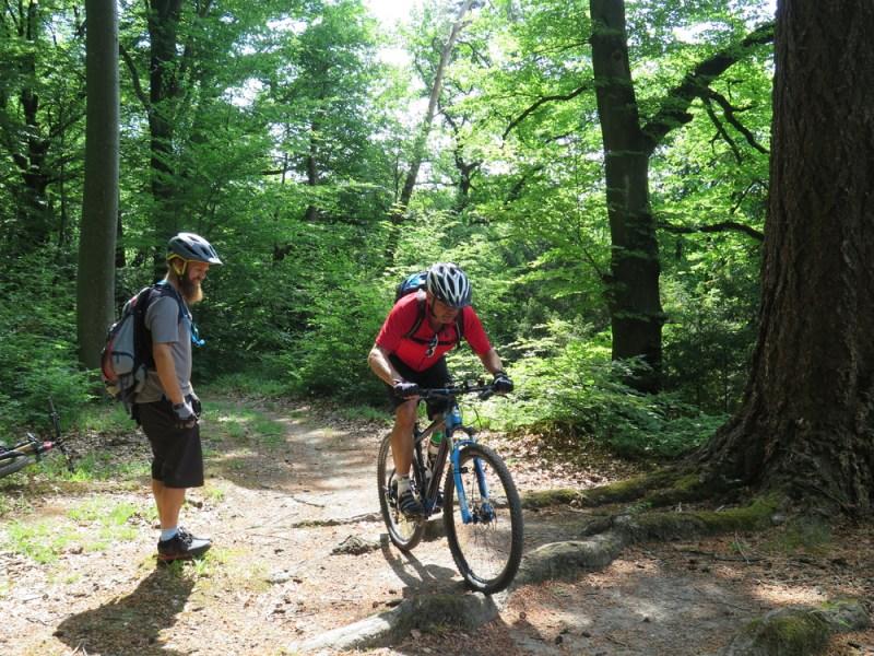 Fahrtechnikkurse Mountainbike EinsteigerInnen