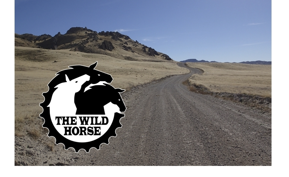 The Wild Horse bike ride utah