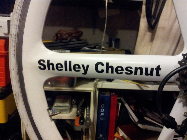 Shelley Chesnuts' name added to the Bike of Angels. RIP my friend.