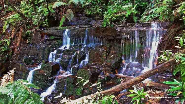 Waterfalls near Leura