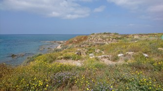 A view from Tel Dor