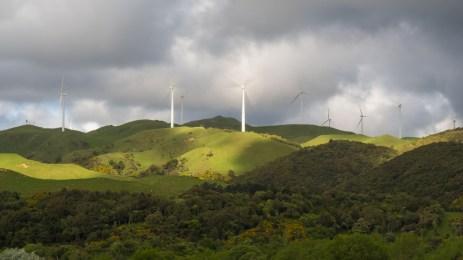 Větrná farma v Ashhurst