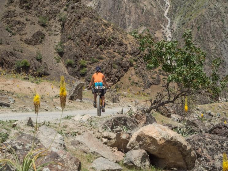 Daška a květiny. Pohraničí Tádžikistánu a Afgánistánu