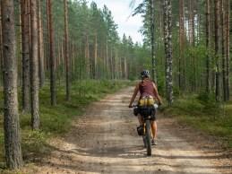 A pak jedeš v lesích. Finsko