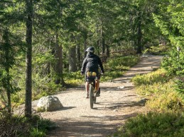 Národní park Koli. Finsko