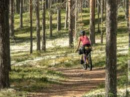 Trail. Národní park Rokua, FInsko