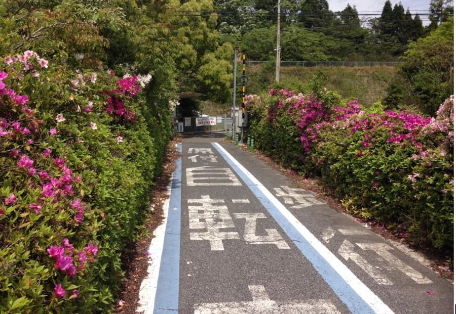 Screen Shot 2019 06 04 at 10.58.14 AM - Bikes, Bridges and Bullet Trains: Riding Japan's Shimanami Kaido route